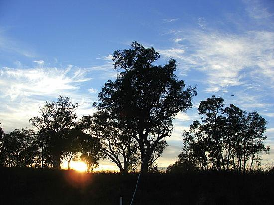 Beautiful sunrise at Kirima Cottages self contained cabin accommodation in Mudgee
